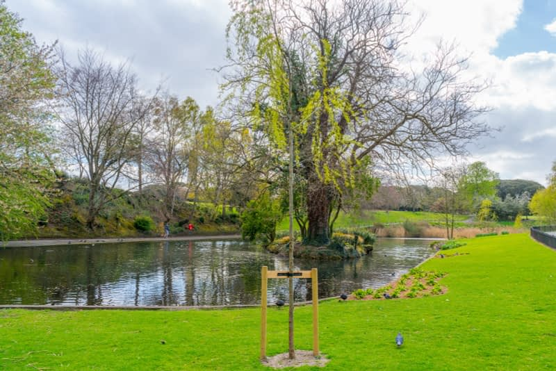 A-WALK-IN-THE-PARK-THE-PEOPLES-FLOWER-GARDENS-IN-PHOENIX-PARK-160258-1