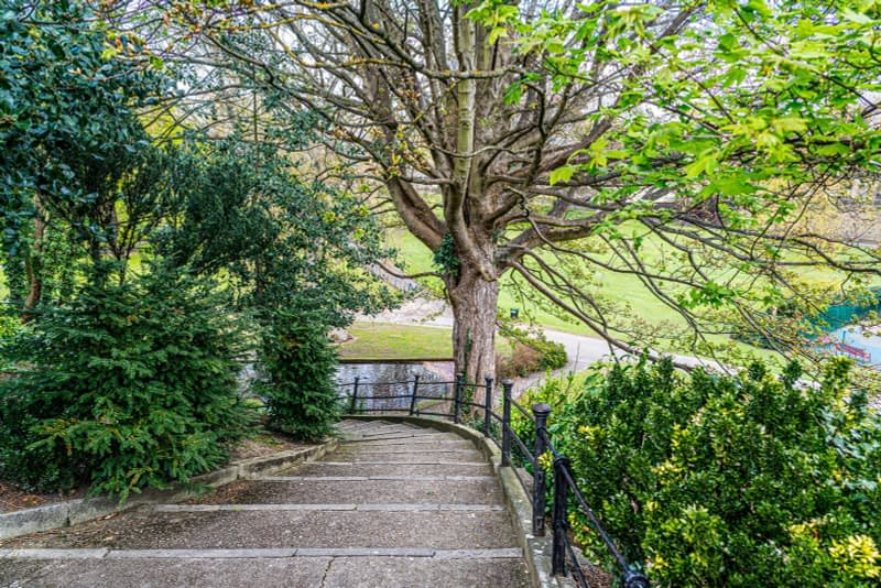 A-WALK-IN-THE-PARK-THE-PEOPLES-FLOWER-GARDENS-IN-PHOENIX-PARK-160263-1