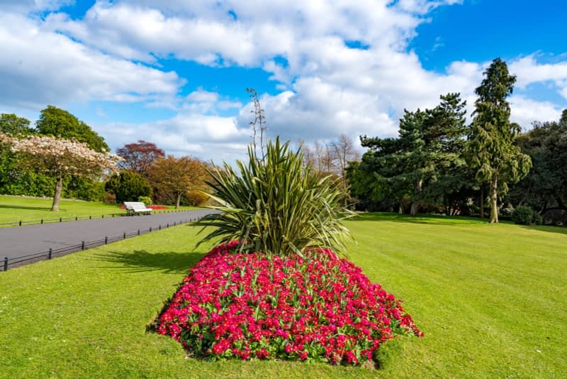 A-WALK-IN-THE-PARK-THE-PEOPLES-FLOWER-GARDENS-IN-PHOENIX-PARK-160267-1