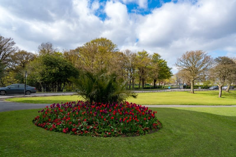 A-WALK-IN-THE-PARK-THE-PEOPLES-FLOWER-GARDENS-IN-PHOENIX-PARK-160281-1