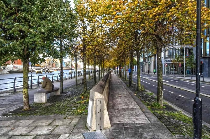 AUTUMN-LEAVES-ALONG-CITY-QUAY-IN-DUBLIN-DOCKLANDS-166535-1