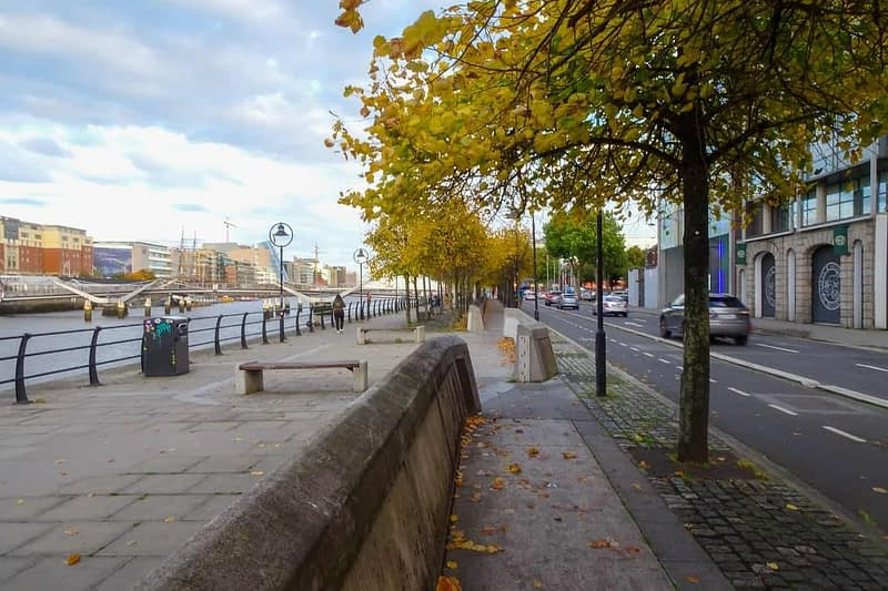 AUTUMN-LEAVES-ALONG-CITY-QUAY-IN-DUBLIN-DOCKLANDS-166536-1