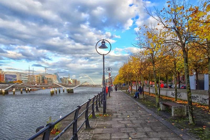 AUTUMN-LEAVES-ALONG-CITY-QUAY-IN-DUBLIN-DOCKLANDS-166538-1