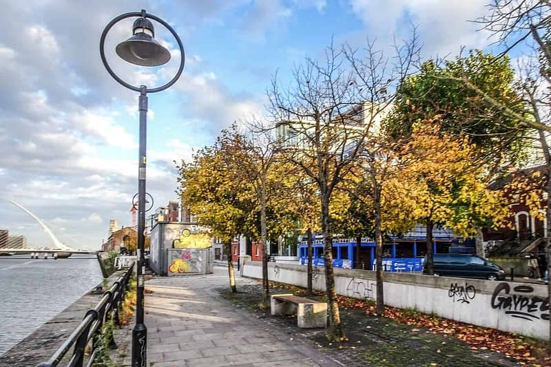 AUTUMN-LEAVES-ALONG-CITY-QUAY-IN-DUBLIN-DOCKLANDS-166544-1