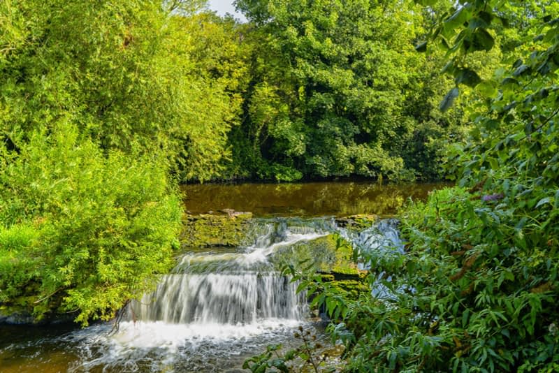 FOLLOWING-THE-DODDER-RIVER-FROM-MILLTOWN-TO-CLONSKEAGH-165429-1