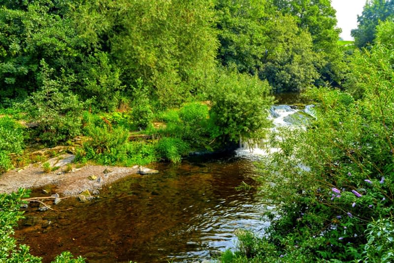 FOLLOWING-THE-DODDER-RIVER-FROM-MILLTOWN-TO-CLONSKEAGH-165435-1