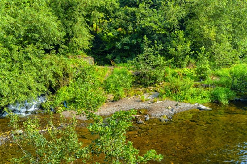 FOLLOWING-THE-DODDER-RIVER-FROM-MILLTOWN-TO-CLONSKEAGH-165436-1