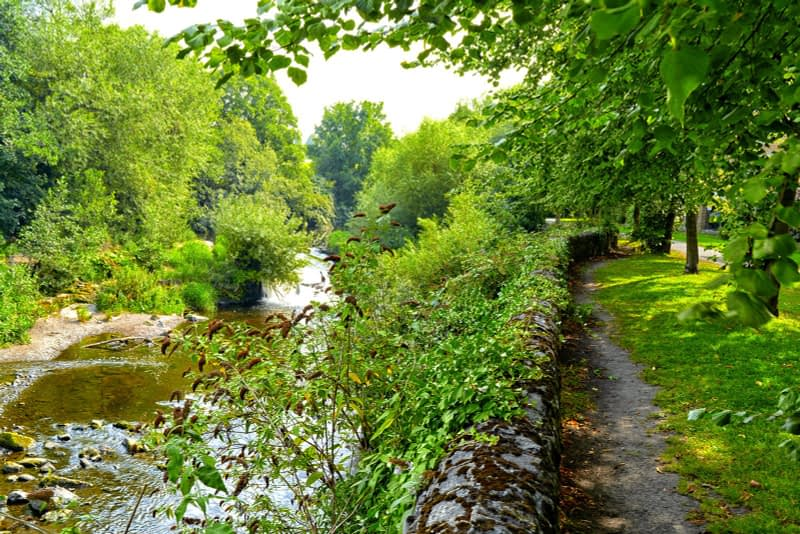 FOLLOWING-THE-DODDER-RIVER-FROM-MILLTOWN-TO-CLONSKEAGH-165439-1