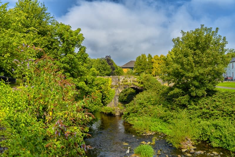 FOLLOWING-THE-DODDER-RIVER-FROM-MILLTOWN-TO-CLONSKEAGH-165444-1