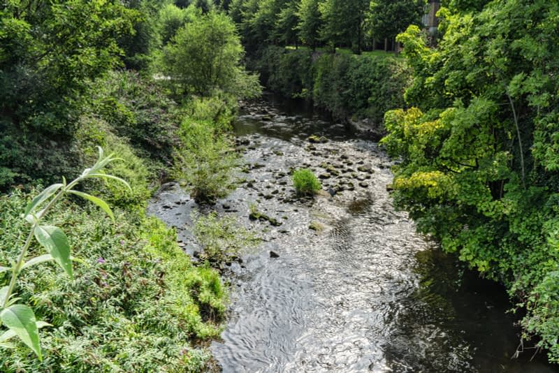 FOLLOWING-THE-DODDER-RIVER-FROM-MILLTOWN-TO-CLONSKEAGH-165449-1