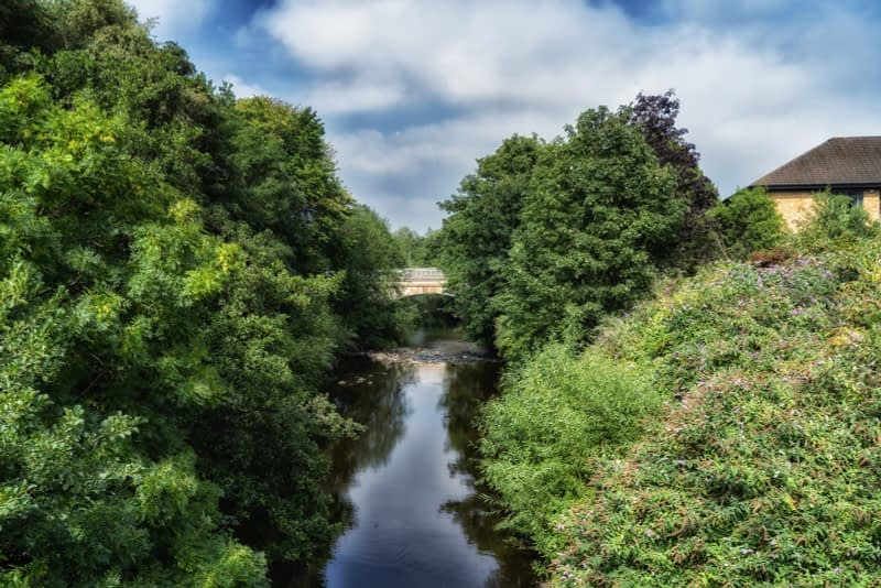 FOLLOWING-THE-DODDER-RIVER-FROM-MILLTOWN-TO-CLONSKEAGH-165450-1