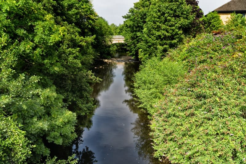 FOLLOWING-THE-DODDER-RIVER-FROM-MILLTOWN-TO-CLONSKEAGH-165451-1