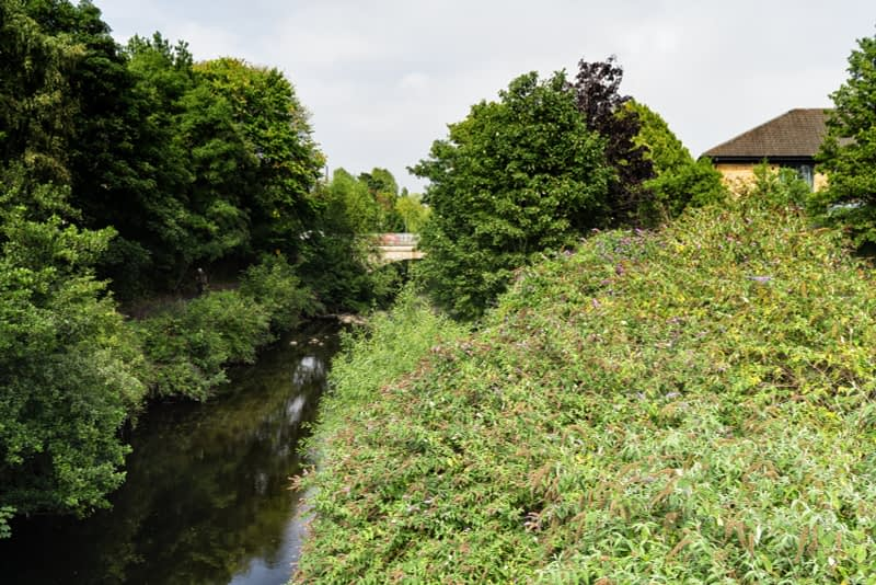 FOLLOWING-THE-DODDER-RIVER-FROM-MILLTOWN-TO-CLONSKEAGH-165453-1