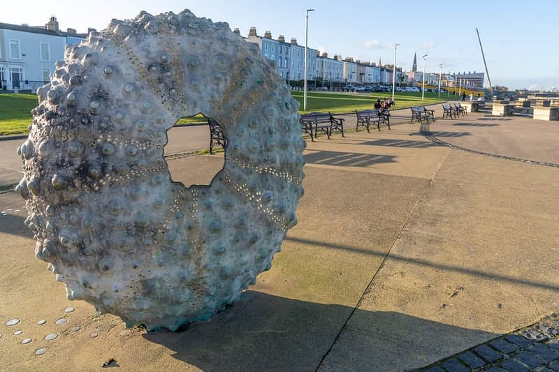 THE-MOTHERSHIP-BY-RACHEL-JOYNT-NEWTOWNSMITH-BETWEEN-DUN-LAOGHAIRE-TOWN-AND-GLASTHULE-159830-1