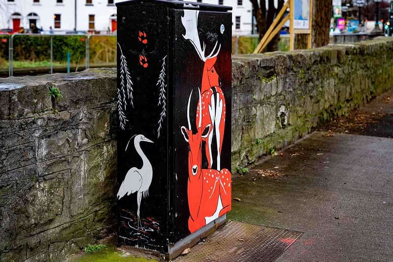 CITY-BIO-DIVERSITY-PAINT-A-BOX-STREET-ART-BY-MARIANNE-ODWYER-159394-1