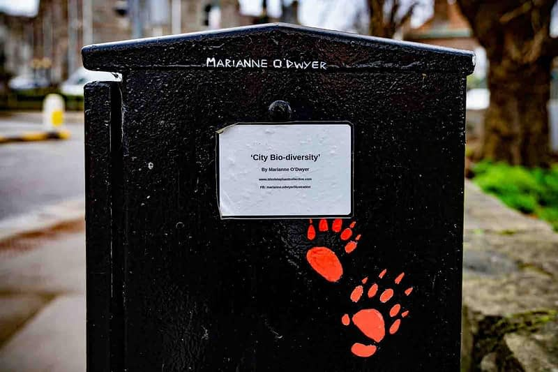 CITY-BIO-DIVERSITY-PAINT-A-BOX-STREET-ART-BY-MARIANNE-ODWYER-159397-1