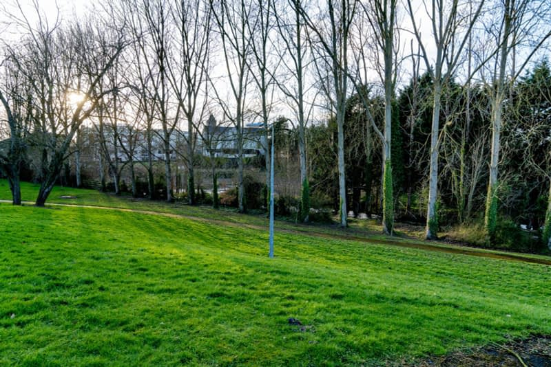 SMALL-PUBLIC-SPACE-AT-POUND-LANE-IN-MAYNOOTH-LYREEN-RIVER-160462-1