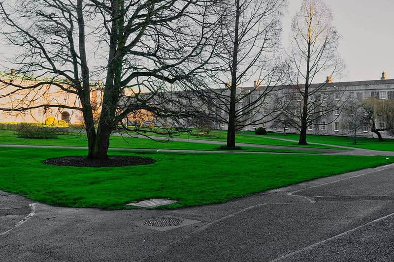 MAYNOOTH-UNIVERSITY-THE-SOUTH-CAMPUS-160392-1