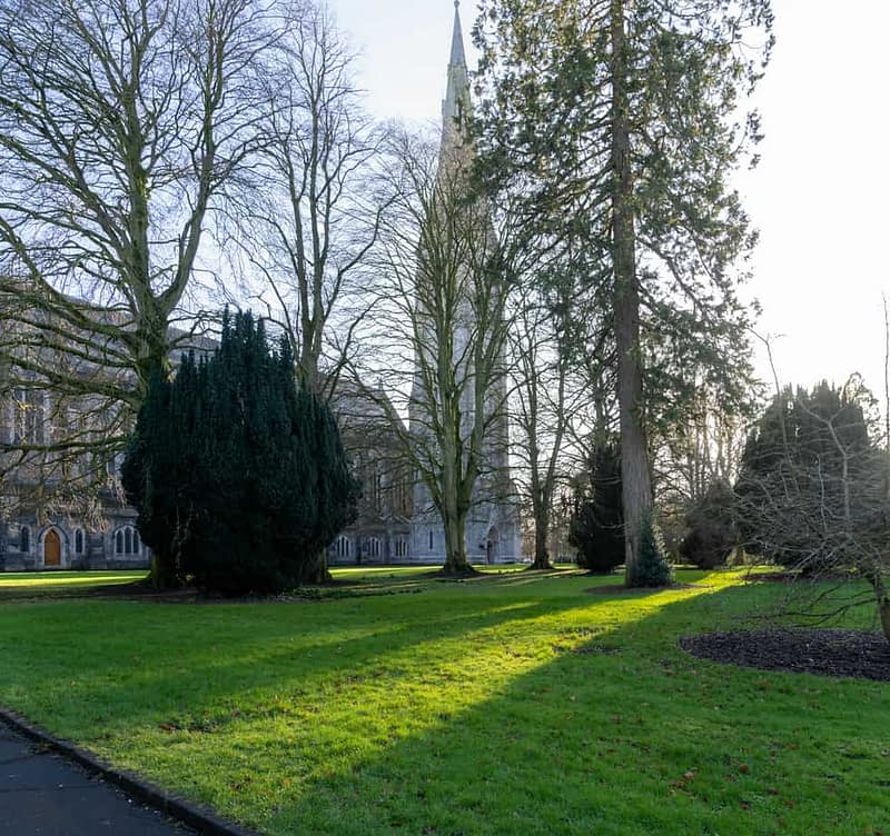 MAYNOOTH-UNIVERSITY-THE-SOUTH-CAMPUS-160398-1