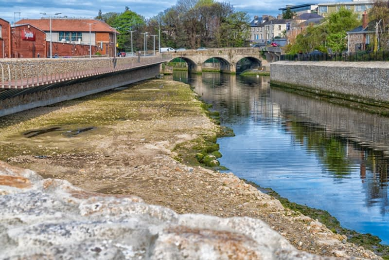 A-WALK-ALONG-THE-RIVER-DARGLE-BRAY-COUNTY-WICKLOW-APRIL-2017-166023-1