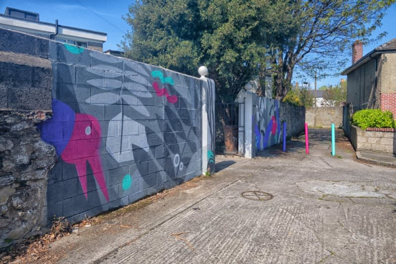 DUBLIN-STREET-ART-ON-VIEW-AT-VERNON-GROVE-IN-RATHGAR-166167-1